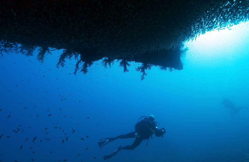 SHARM ASH SHAYKH, EGYPT - JULY 10: Scuba Divers visit the wreck of the SS Thistlegorm, which was sunk by German bombers during World War II, on July 10, 2015 in Sharm ash Shaykh, Egypt. (Photo by Dave J Hogan/Getty Images)