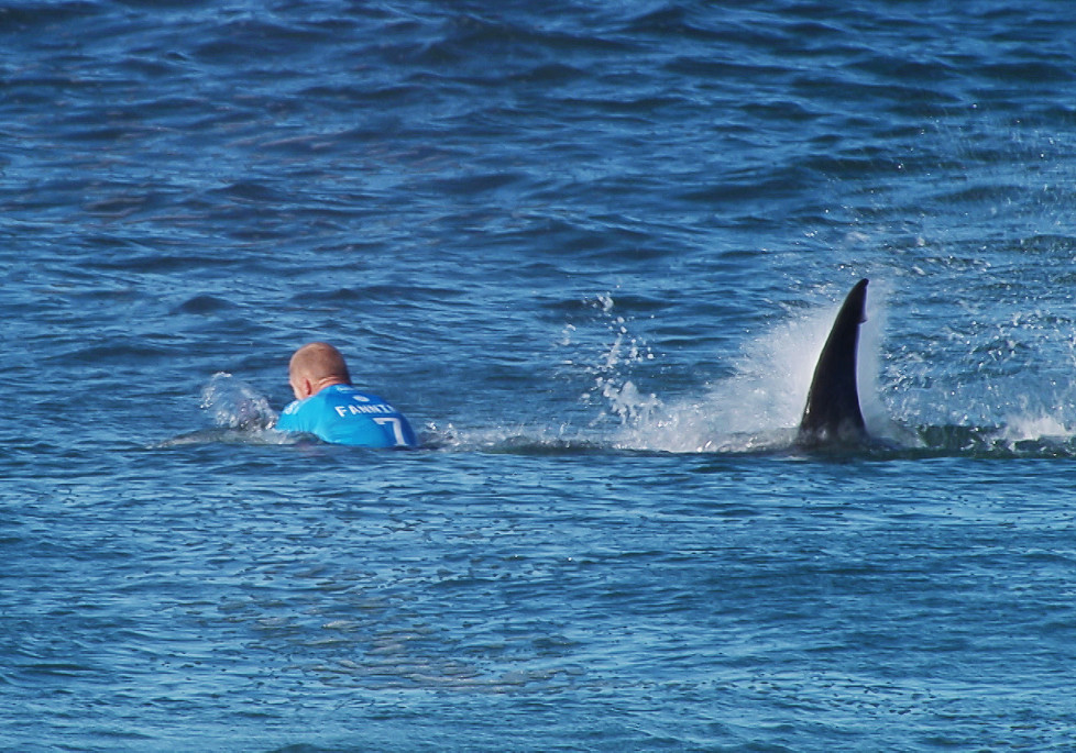 "This handout screengrab made and released on July 19, 2015 by the Worl Surf League (WSL) shows Australian surfer Mick Fanning being attacked by a shark during the Final of the JBay surf Open on Sunday July 19, 2015 in Jeffreys Bay. Mick Fanning, 34, was competing in the final heat of a world tour event at Jeffreys Bay in the country's Eastern Cape province when a looming black fin appeared in the water behind him. He fought back against the shark, escaping from the terrifying scene without injury. AFP PHOTO / WSL ==RESTRICTED TO EDITORIAL USE - MANDATORY CREDIT ""AFP PHOTO / WSL"" - NO MARKETING - NO ADVERTISING CAMPAIGNS - DISTRIBUTED AS A SERVICE TO CLIENTS== / AFP / WSL / -"