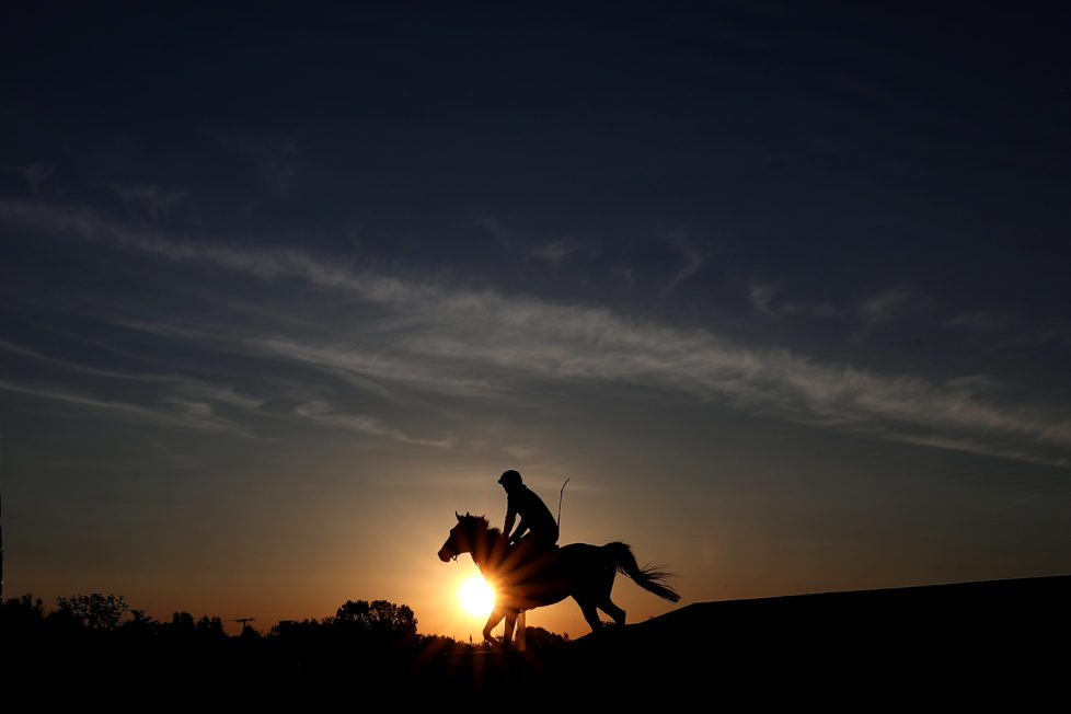 BALTIMORE, MD - MAY 20: A horse trains on track during a training session a day before the 141st running of the Preakness Stakes at Pimlico Race Course on on May 20, 2016 in Baltimore, Maryland. (Photo by Patrick Smith/Getty Images)