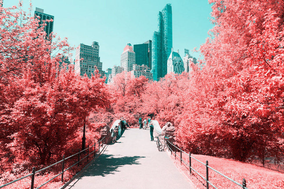 Infrared Take on New York's Central Park (c) Paolo Pettigiani